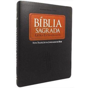 Biblia Sagrada Letra Extragigan