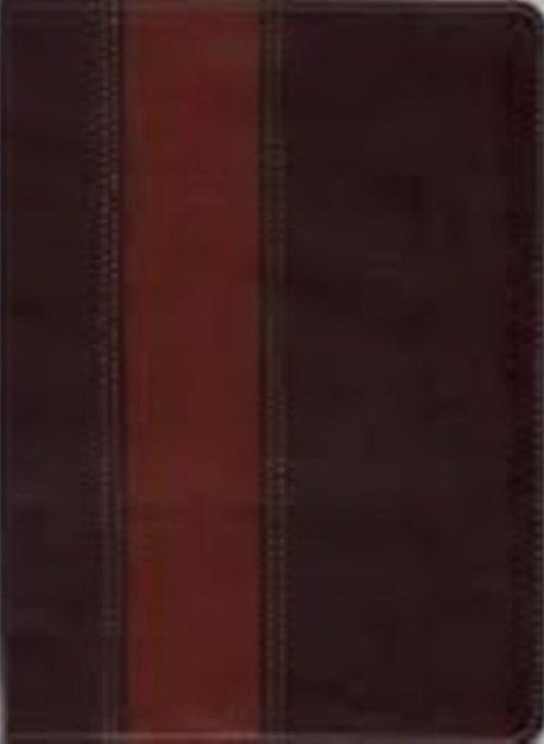 Bíblia Thompson (Marrom Escuro e Claro)
